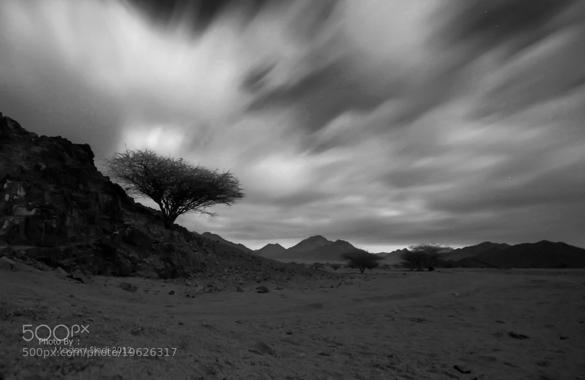 Photograph Untitled by Madani Mohamed on 500px