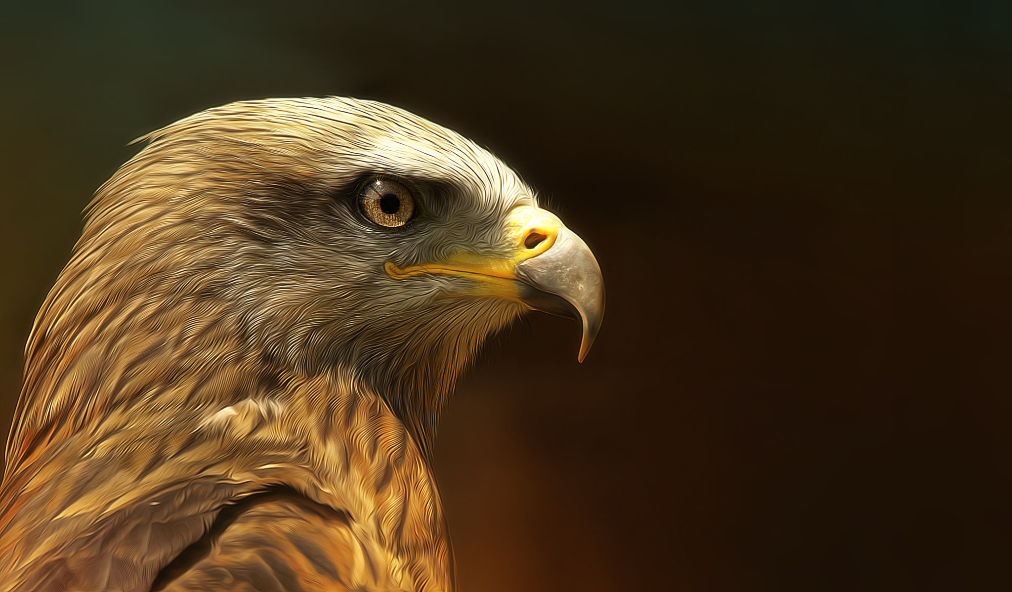 Photograph red hunter by Sonja Probst on 500px