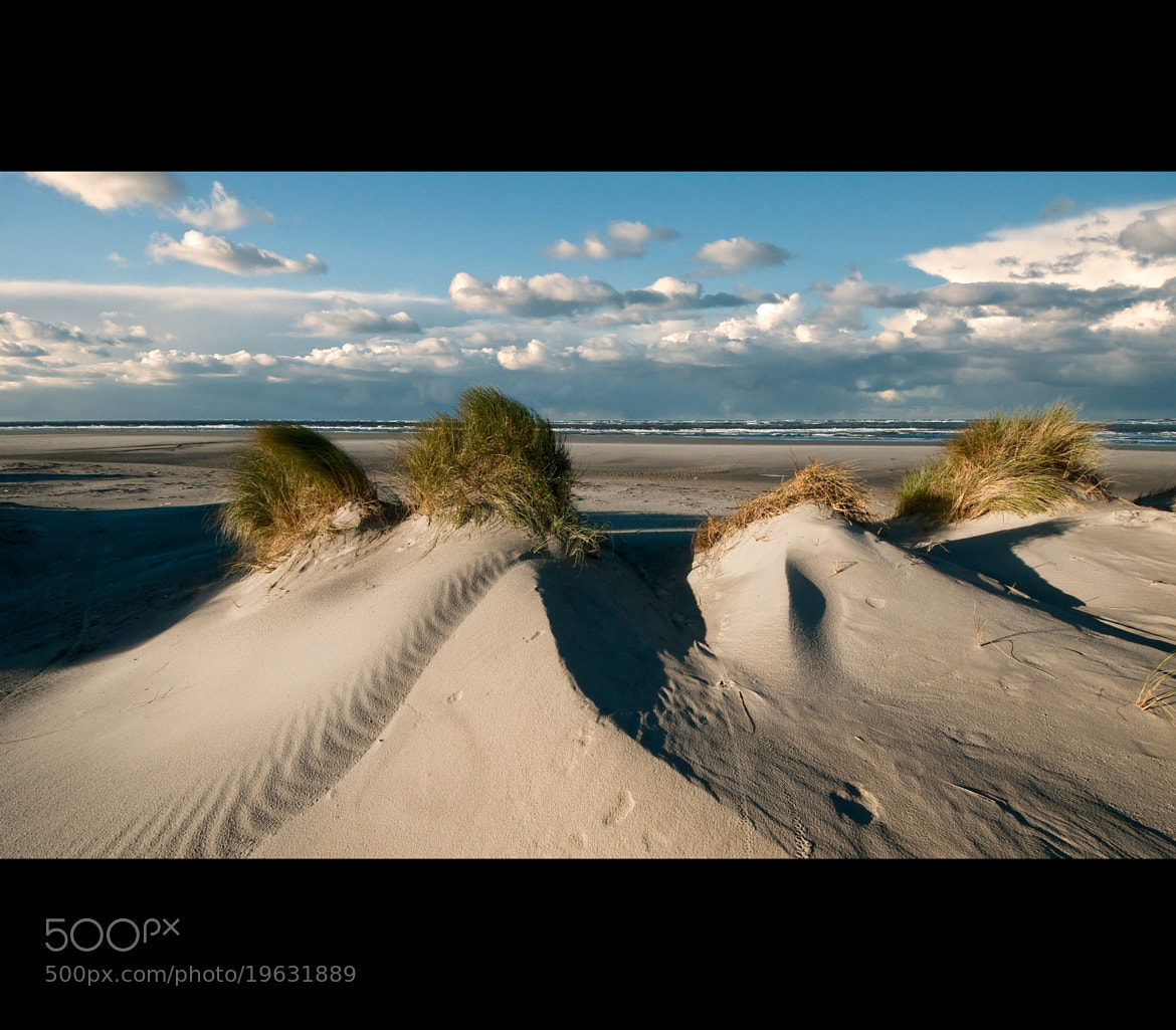 Photograph The Beach Brothers by Daniel Bosma on 500px