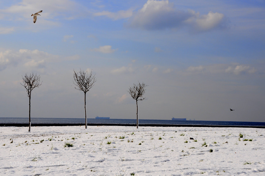 Photograph Untitled by palabra - Aykut Ekşiler on 500px
