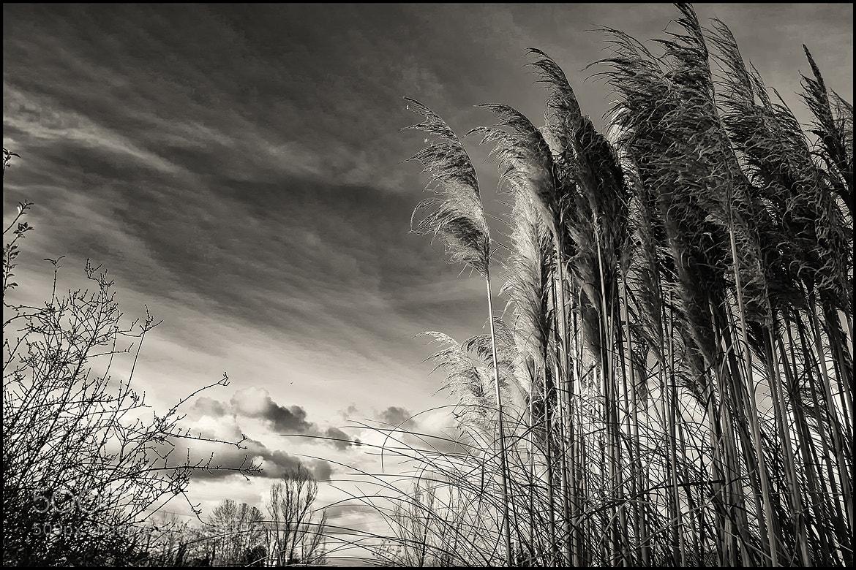 Photograph last sunburn by Rodriquez Gabriele on 500px