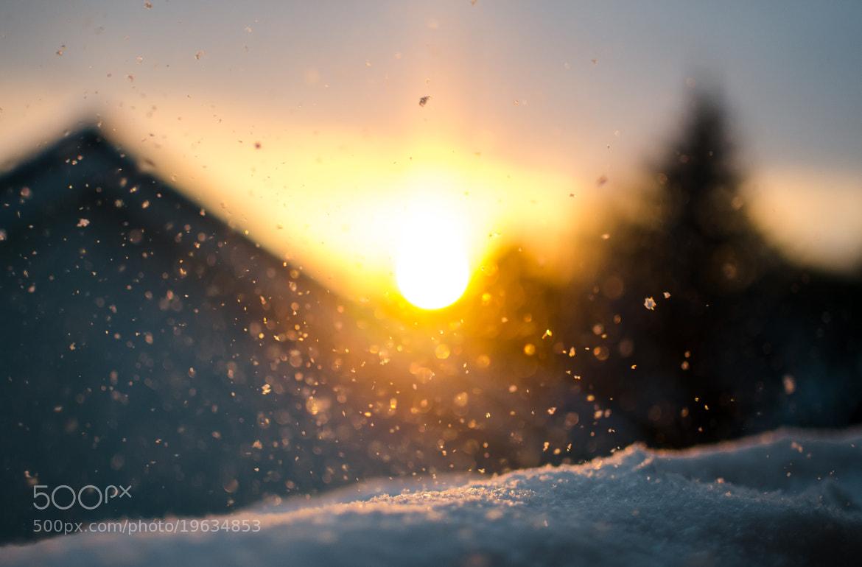 Photograph Snowflakes by Riku Toivonen on 500px