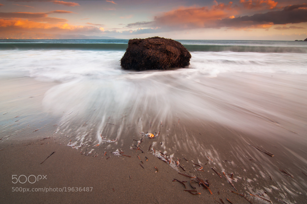 Photograph The seaweed rock by Carlo Murenu on 500px
