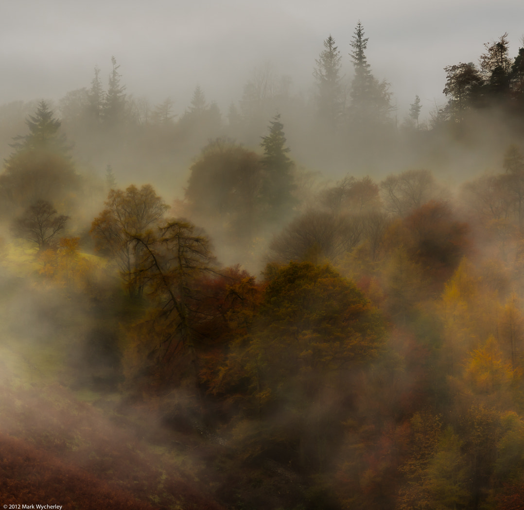 Photograph Mists by Mark Wycherley on 500px