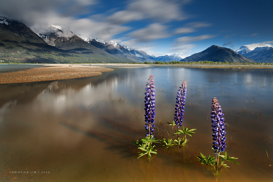 Photograph River's Beauty by Christian Lim on 500px