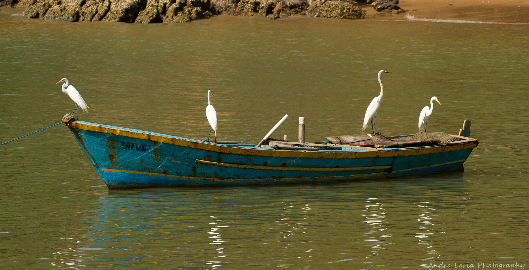 Photograph fishing party by Andro Loria on 500px