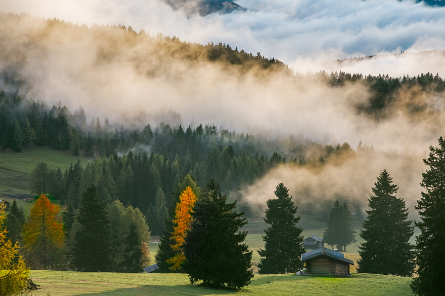 Dolomites - Clouds & Trees