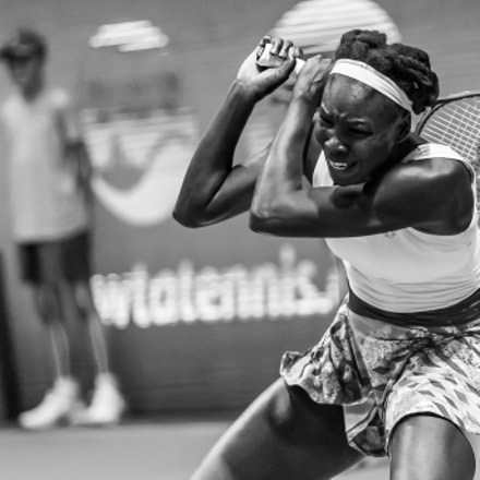 Venus Williams. Before loose., Canon EOS-1D X, Canon EF 200-400mm f/4L IS USM