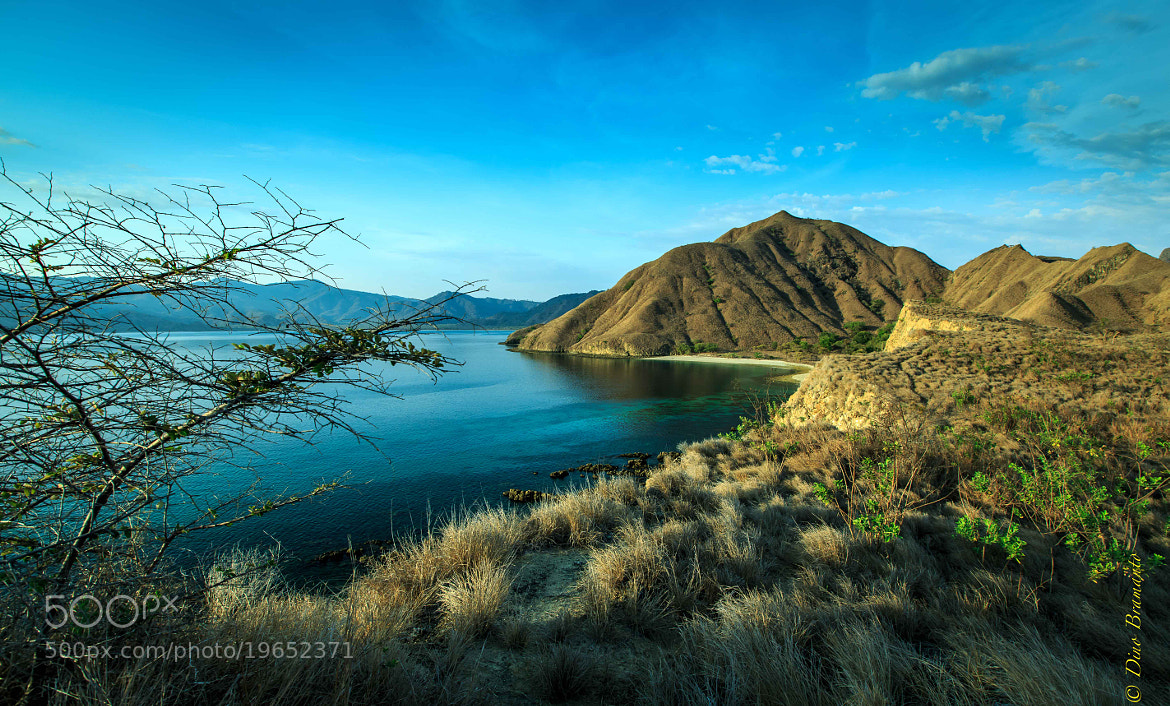 Photograph Island of the Dragon by Dino Bramanto on 500px