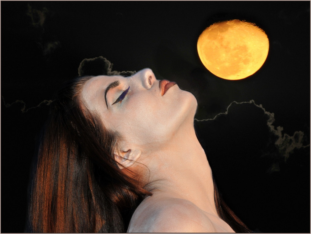 Photograph Moon Worship by Marc Leroy on 500px