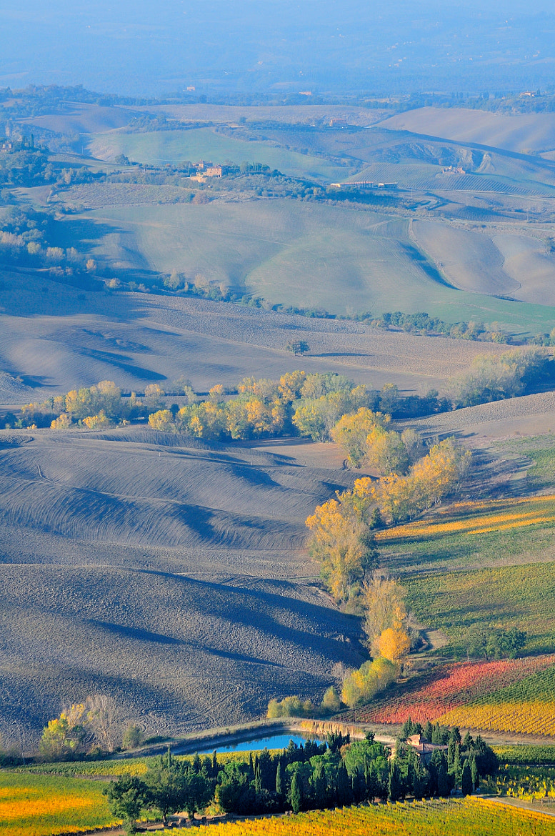 Photograph Autumn Time: vertical landscape from Montepulciano... by Renato Pantini on 500px