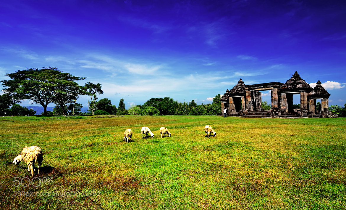 Photograph Boko Tample by Ade Rinaldi on 500px