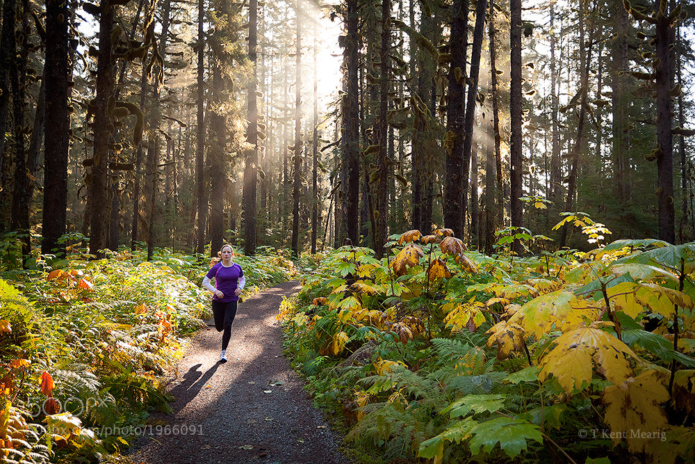 Photograph Sunbeam Run by Kent Mearig on 500px