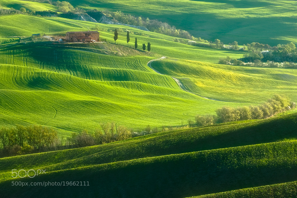 Photograph The sun Tuscany by Boguslaw Strempel on 500px
