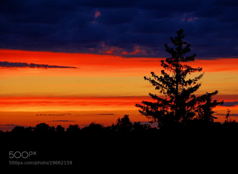 Photograph sunset by Sheffi M. on 500px