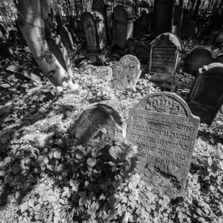 Old Jewish Cemetery Tarn, Canon EOS 6D, Sigma 14mm f/2.8 EX Aspherical HSM