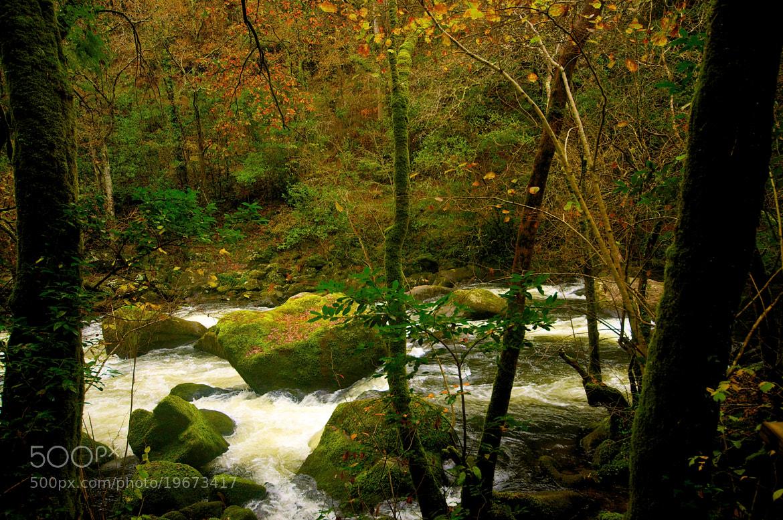 Photograph la paciencia by Luis Martínez on 500px