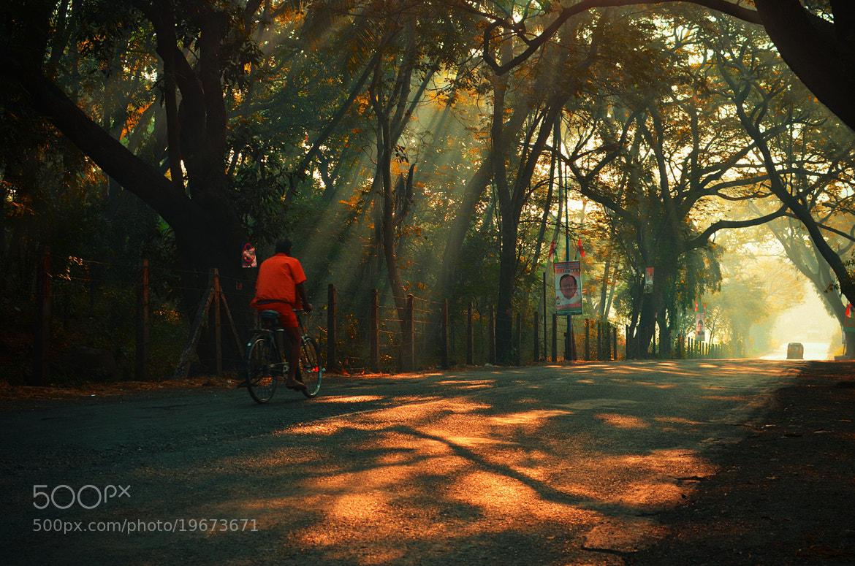 Photograph Sunny morning !! by yogesh waikul on 500px