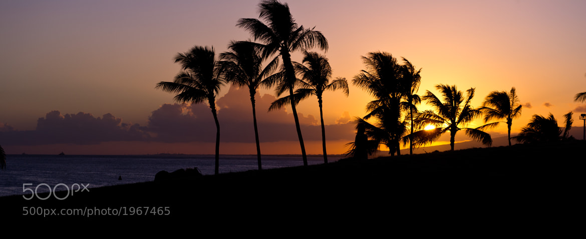 Photograph Typical Hawaiian Sunset by Todd Maeda on 500px