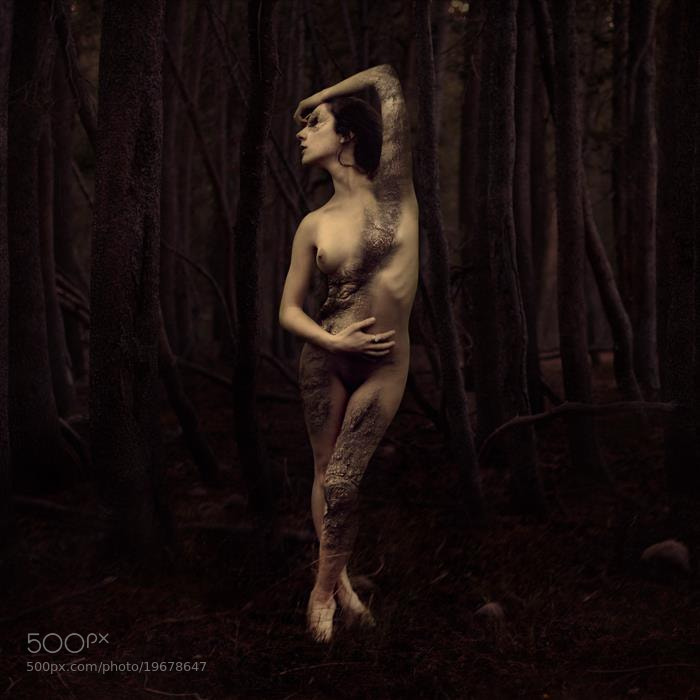 Photograph How the Forest Grows by Brooke Shaden on 500px