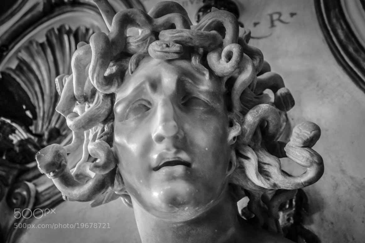 Photograph Medusa in Stone by Sohail Fazluddin on 500px