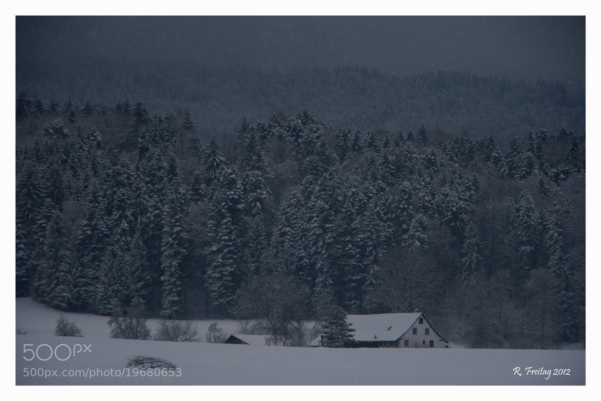 Photograph Wintertime (2) by Regina F on 500px
