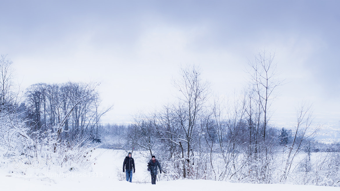Photograph walking through snowy white fields by Olivia  on 500px