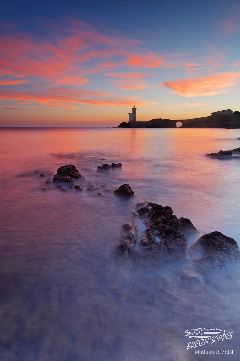 Photograph Crazy Pink ! by Breizh'scapes Photographes on 500px