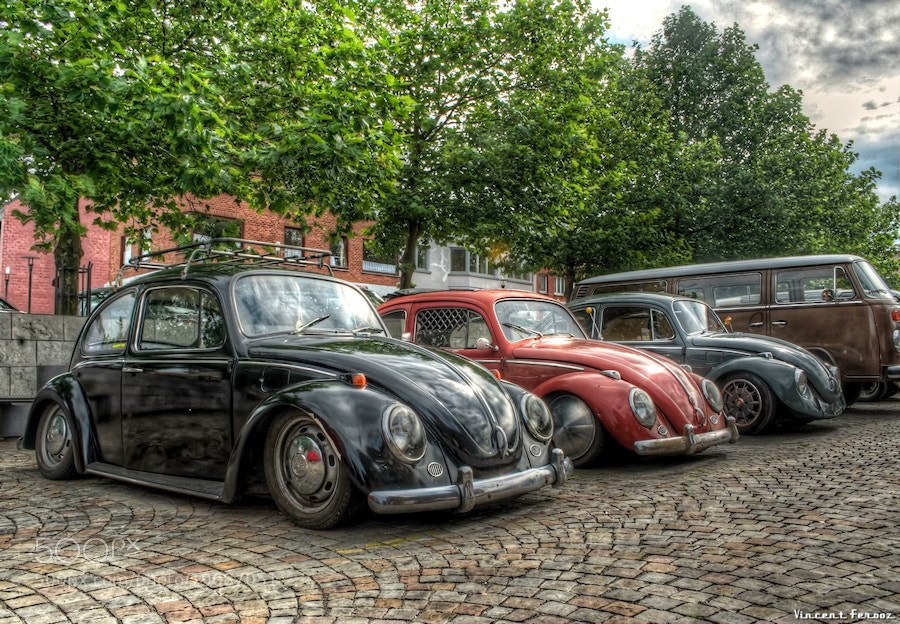 Photograph Beetle Band by Vincent Ferooz on 500px