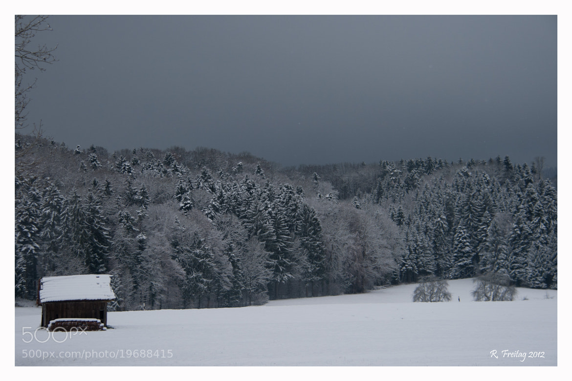 Photograph Wintertime (3) by Regina F on 500px