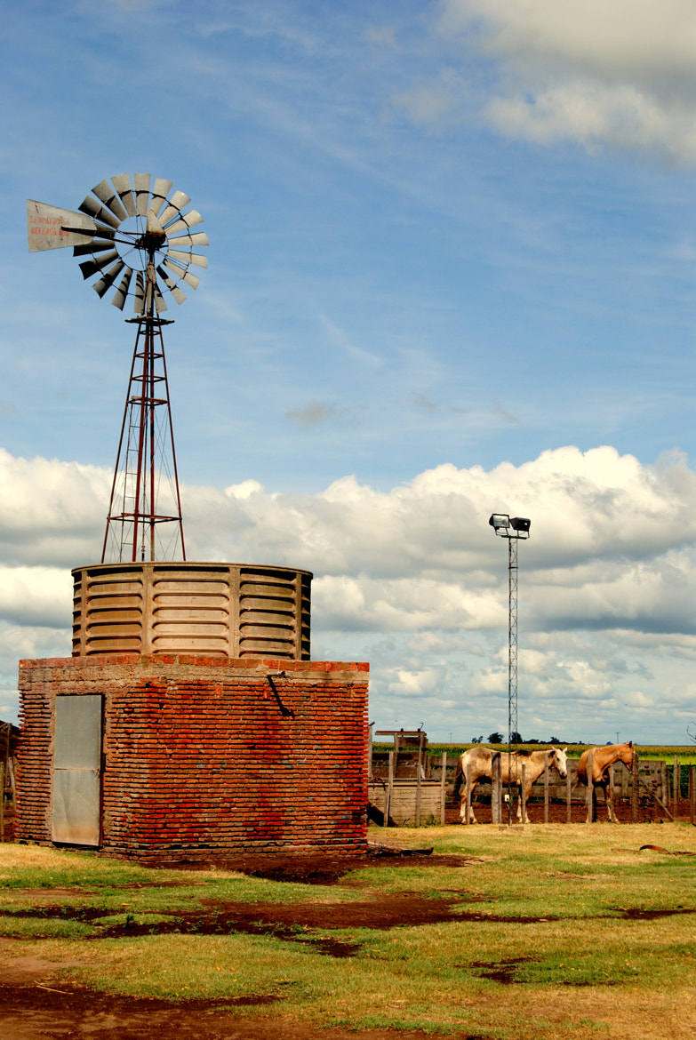 Photograph Argentinian country by Isabella  on 500px