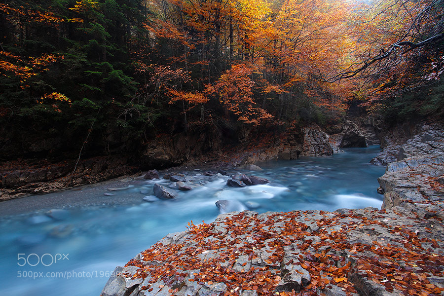 "Photograph "" Autumn Blues II "" by Juan Pavon on 500px"