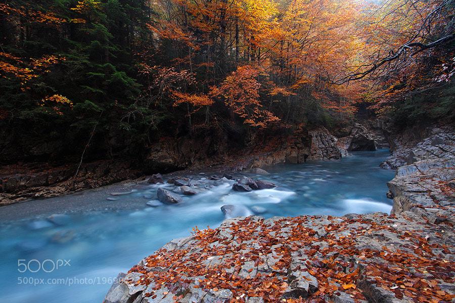 "Photograph "" Autumn Blues II "" by Juan Pavon on 500px"
