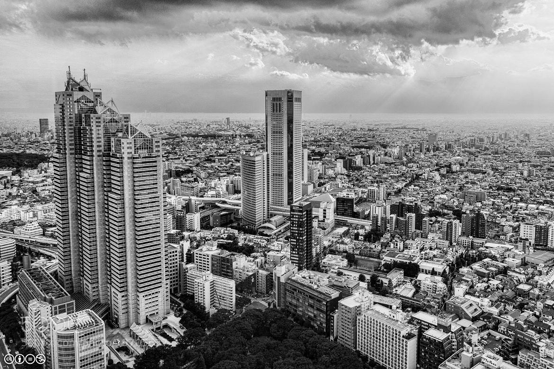 Photograph West Shinjuku by Chris Ubik on 500px