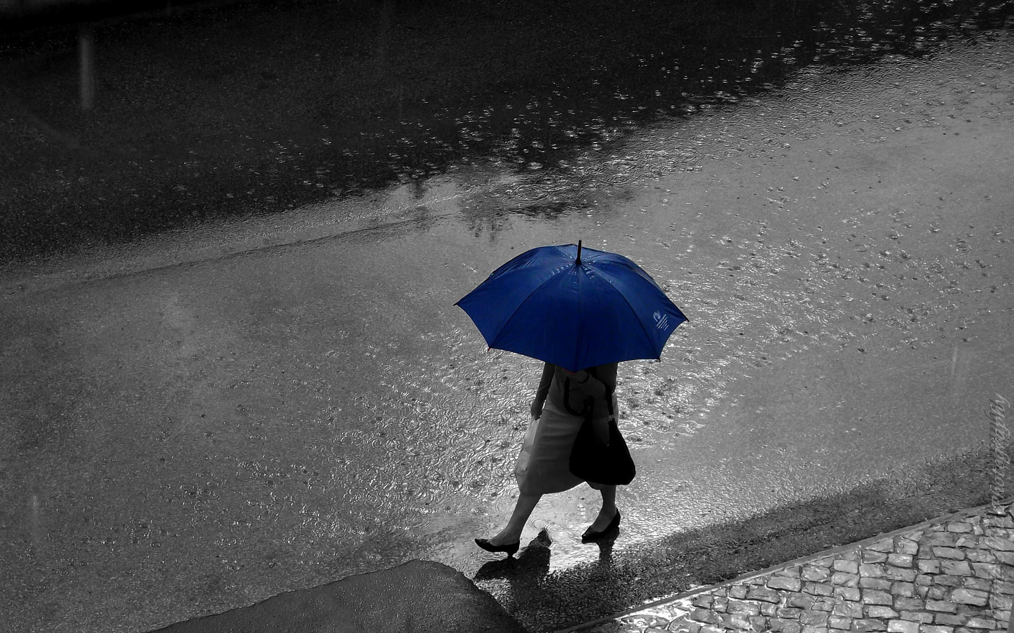 Photograph Rainy Day by Tânia S Silva on 500px