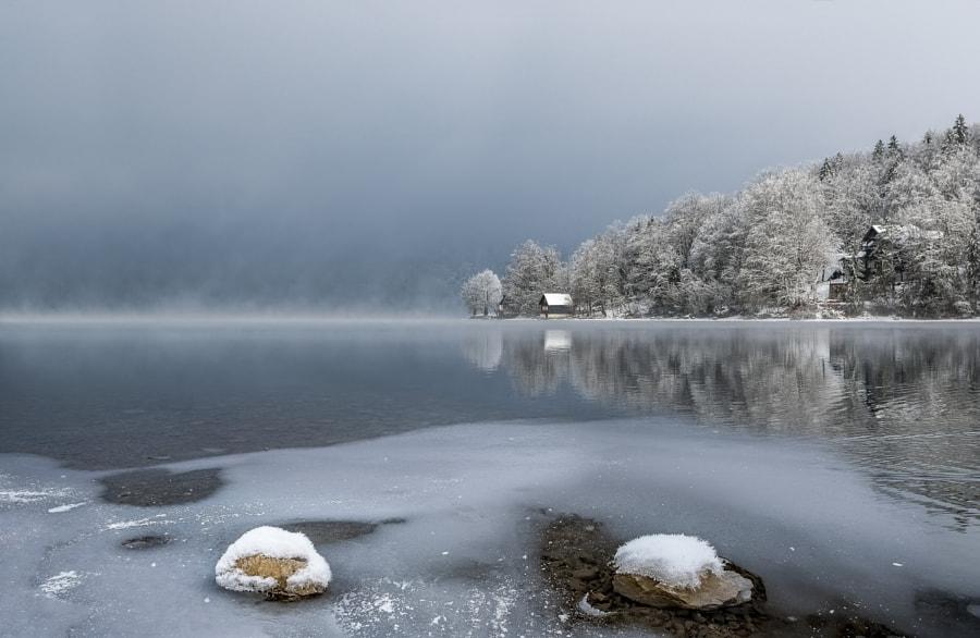 Icy Morning Lake Bohinj