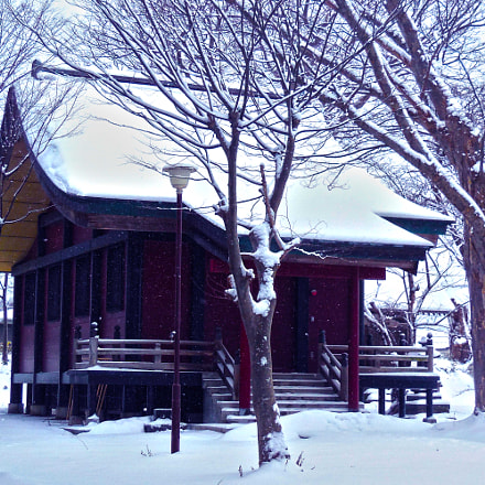 Winter at the shrine, Nikon COOLPIX S6400
