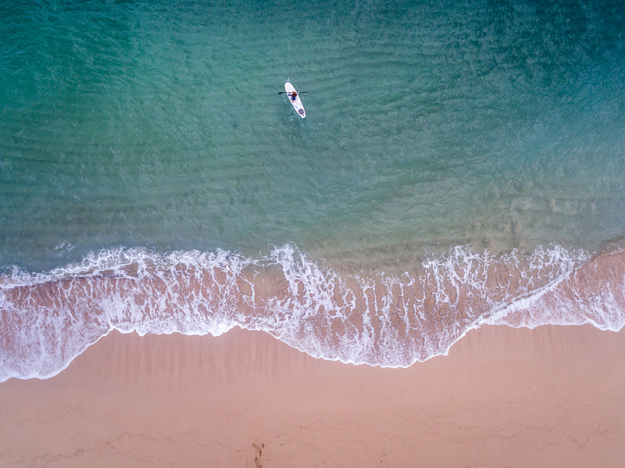 The Paddle Surfer by Kelly Headrick on 500px.com