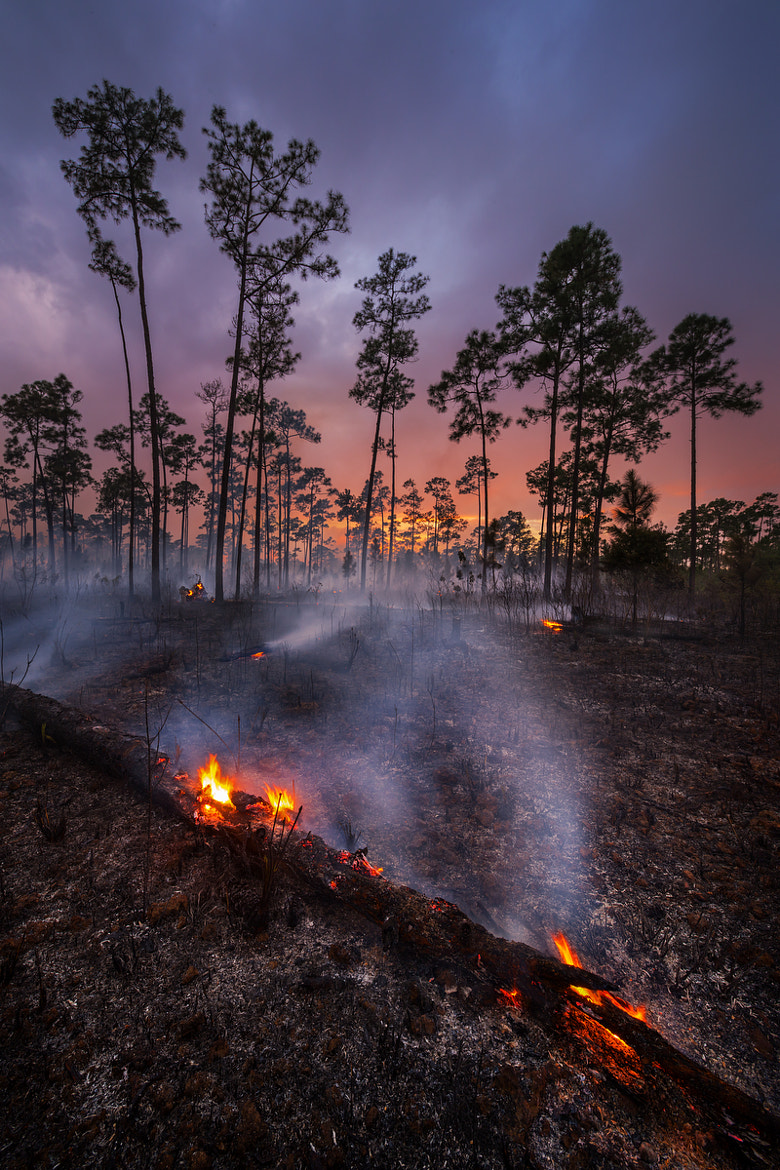 Photograph A Good Burn by Paul Marcellini on 500px