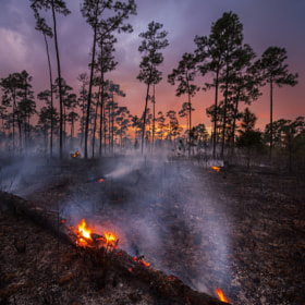 A Good Burn by Paul Marcellini (PaulMarcellini)) on 500px.com