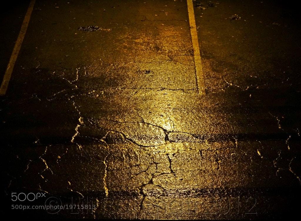 Photograph Amber Glow Wet Pavement by Lili Rahmati on 500px