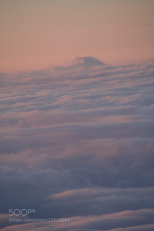 Photograph Tiny top by Yasu Ikeda on 500px