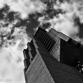 """Bell Tower"" 2 B&W by Rachel Cohen (RCNaturephotos)) on 500px.com"