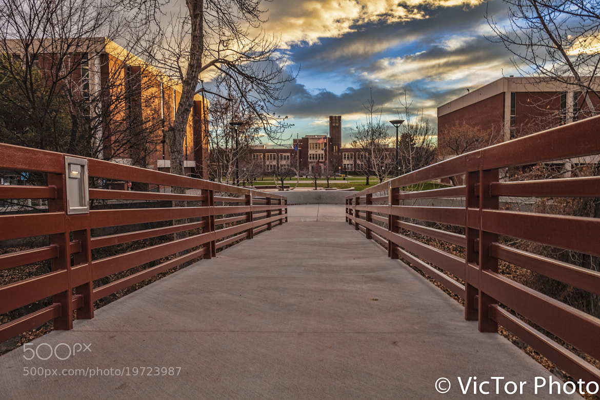 Photograph at the campus by Victor Photo on 500px