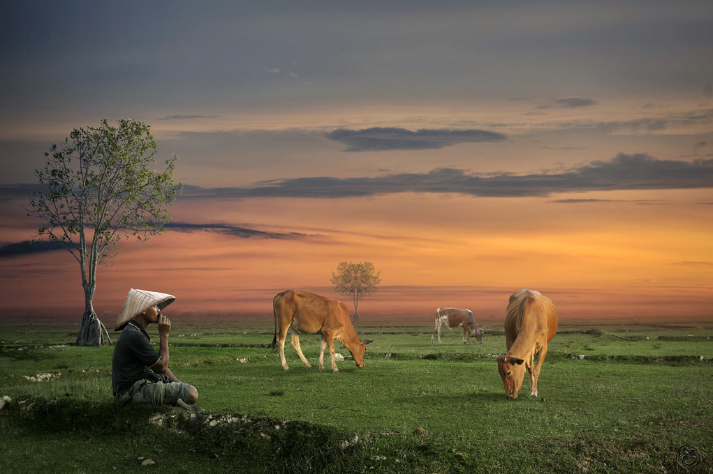 Photograph At Work by chegu diman on 500px