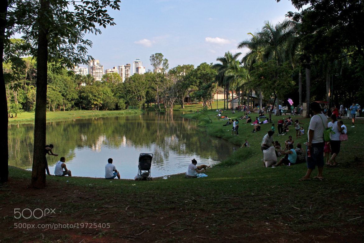 Photograph An afternoon at the park! by  Soli Rocha on 500px