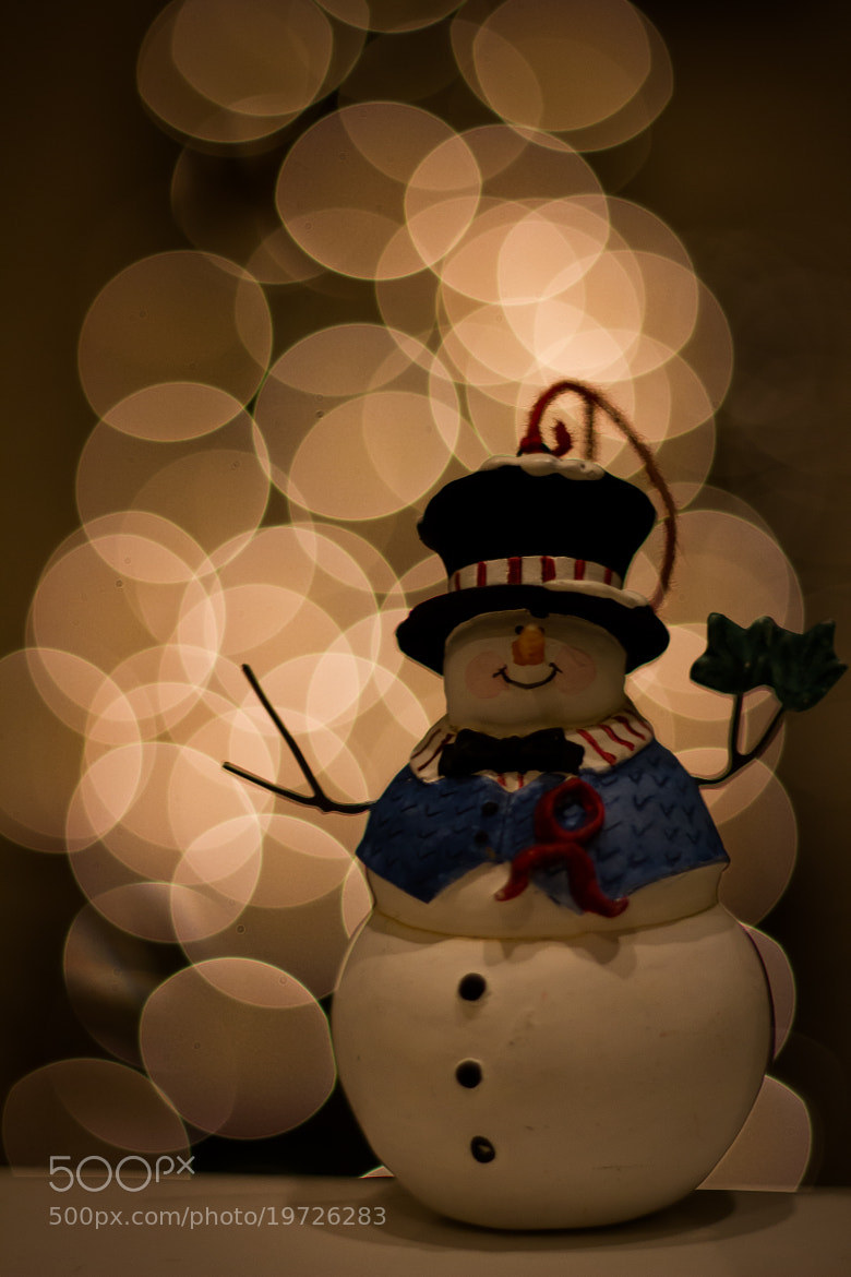 Photograph Mini Snowman by Joshua Bloomfield on 500px