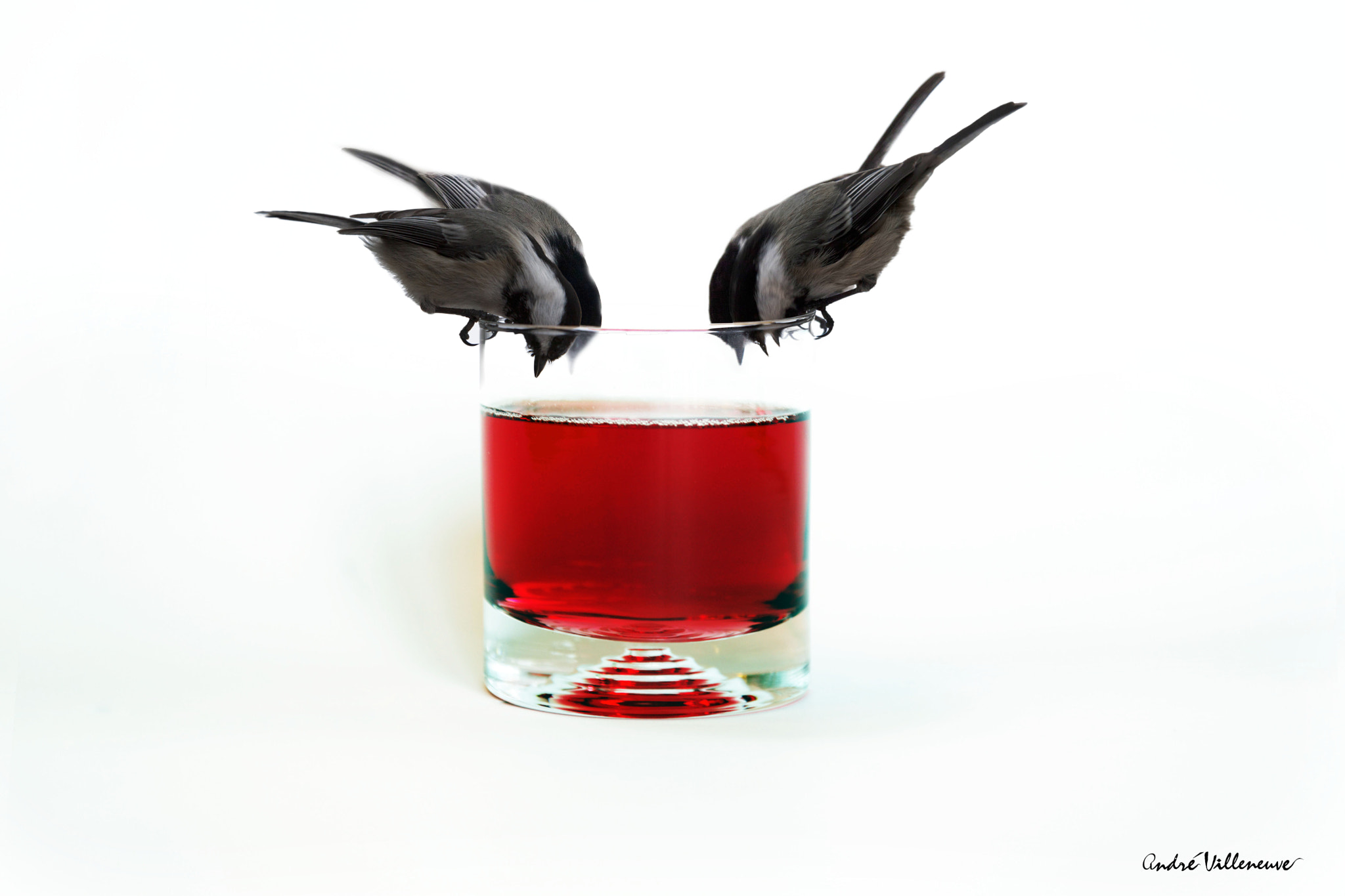 Photograph Cocktail by Andre Villeneuve on 500px