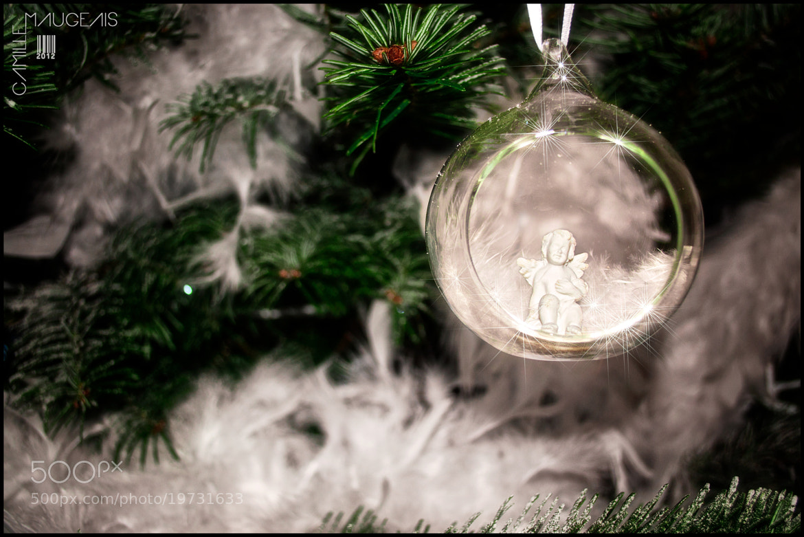Photograph My Christmas tree - Angel by Camille Maugeais on 500px