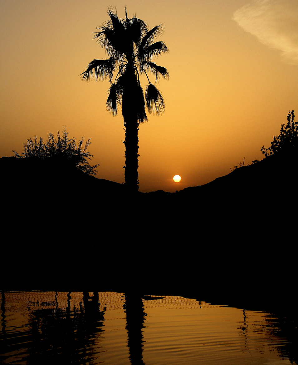 Photograph warm sunset by Raquel Camurasiquel on 500px